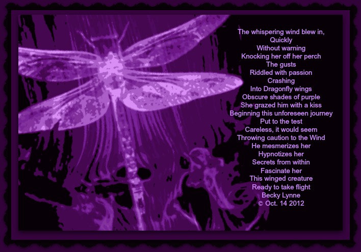 Dragon Fly Poems 3